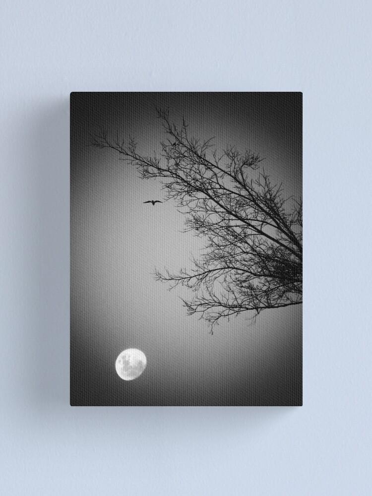 Alternate view of Night Flight  Canvas Print