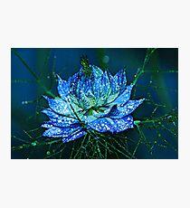 Blue Love Photographic Print