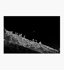 Tough going as the moon looks down Photographic Print