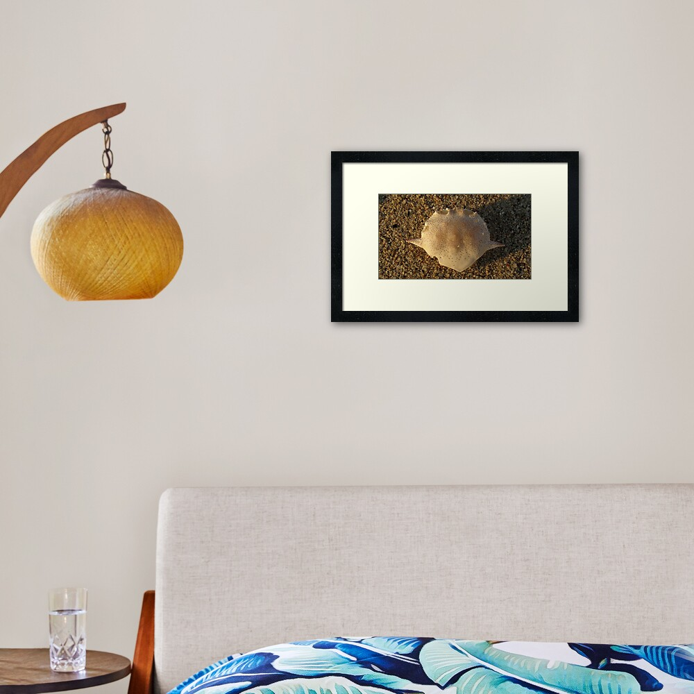 Matuta Framed Art Print