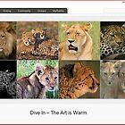 8 big cats by HomepageVirgin