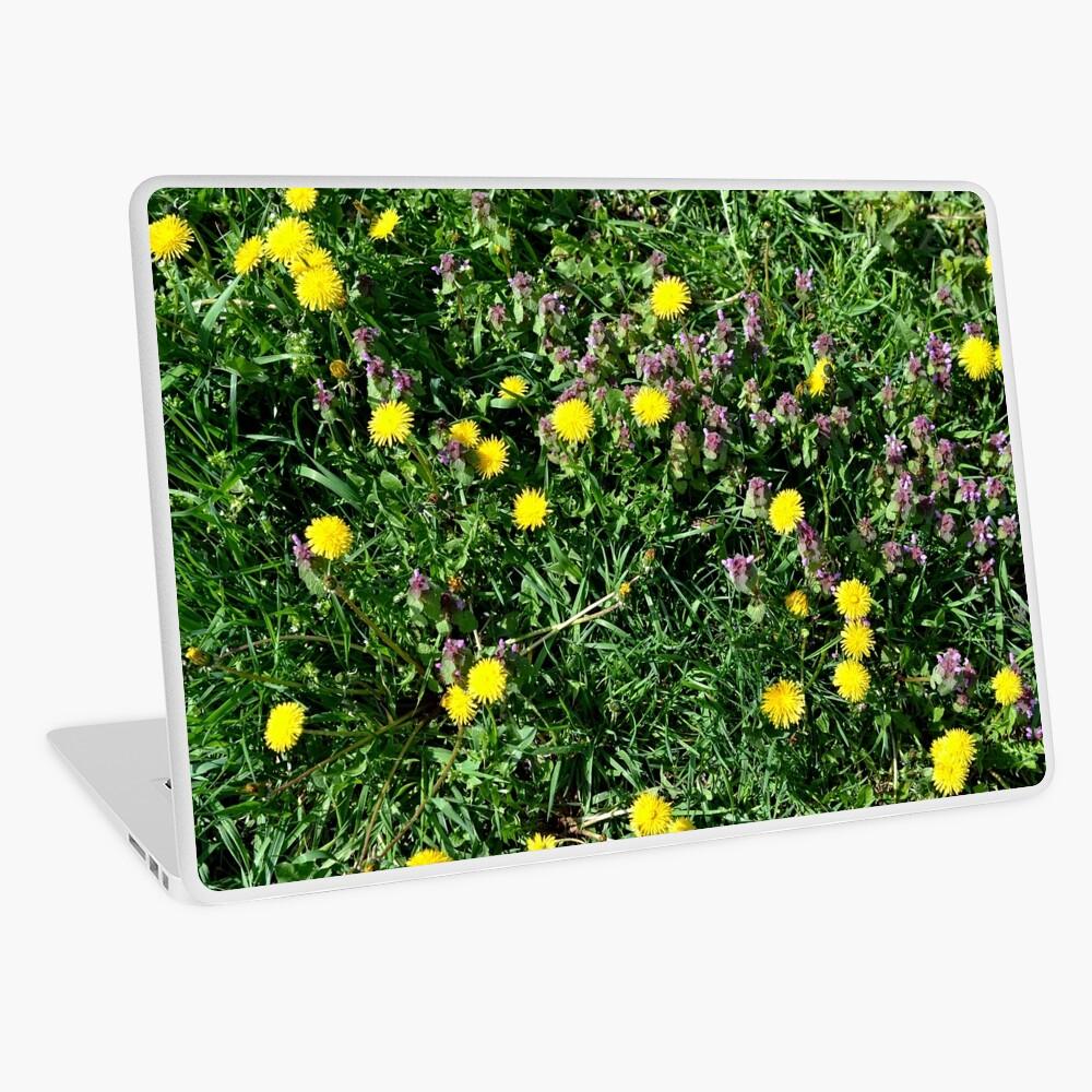 Dandelions Laptop Skin