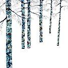 Winter Trees I by RochelleMc
