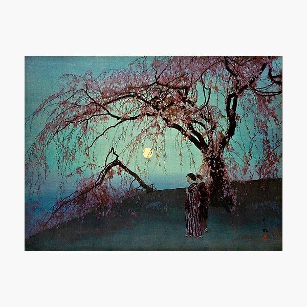 Kumoi Sakura by Yoshida Hiroshi Photographic Print