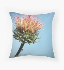 The Itsy Bitsy Spider --Unframed Throw Pillow