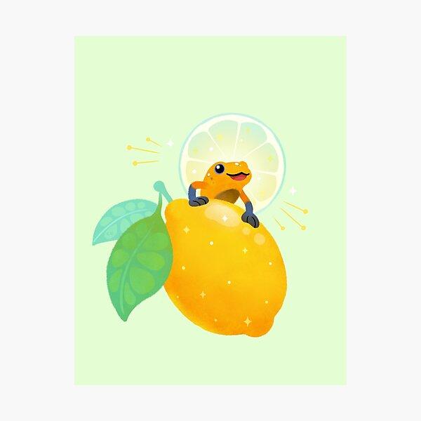 Golden poison lemon sherbet 1 Photographic Print