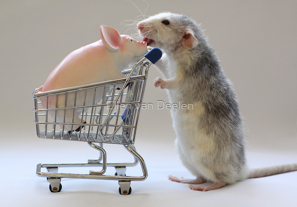 Going shopping with my friend :) by Ellen van Deelen