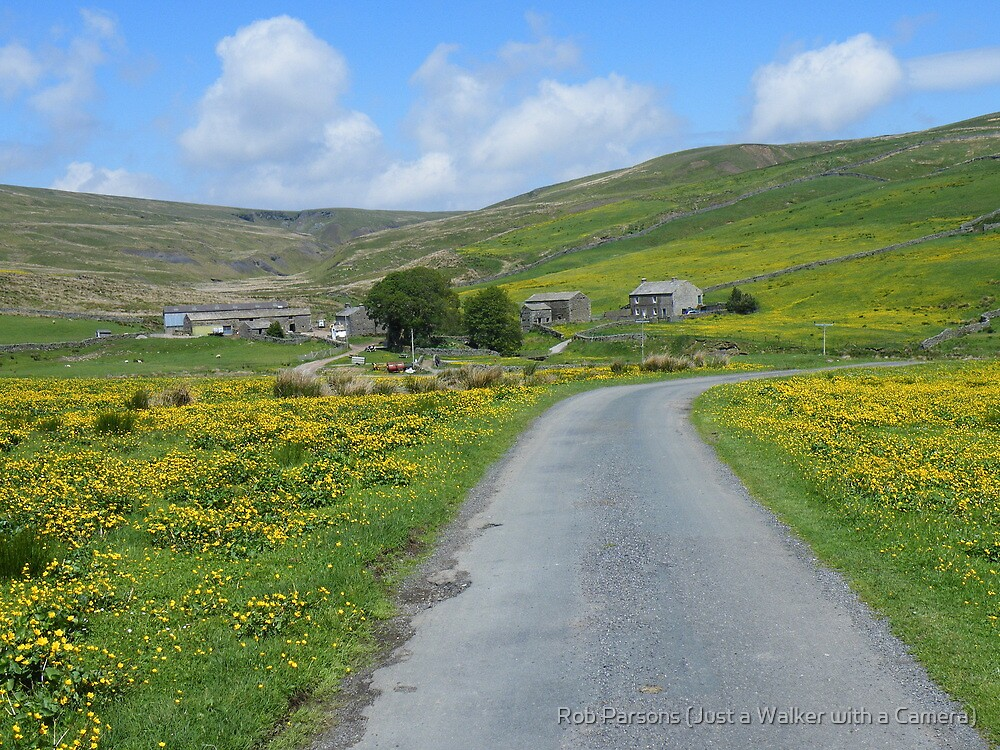 Yorkshire Dales: The Road to Ravenseat Farm by Robert parsons
