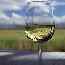 Good Ole Summer Wine by Jill Doyle