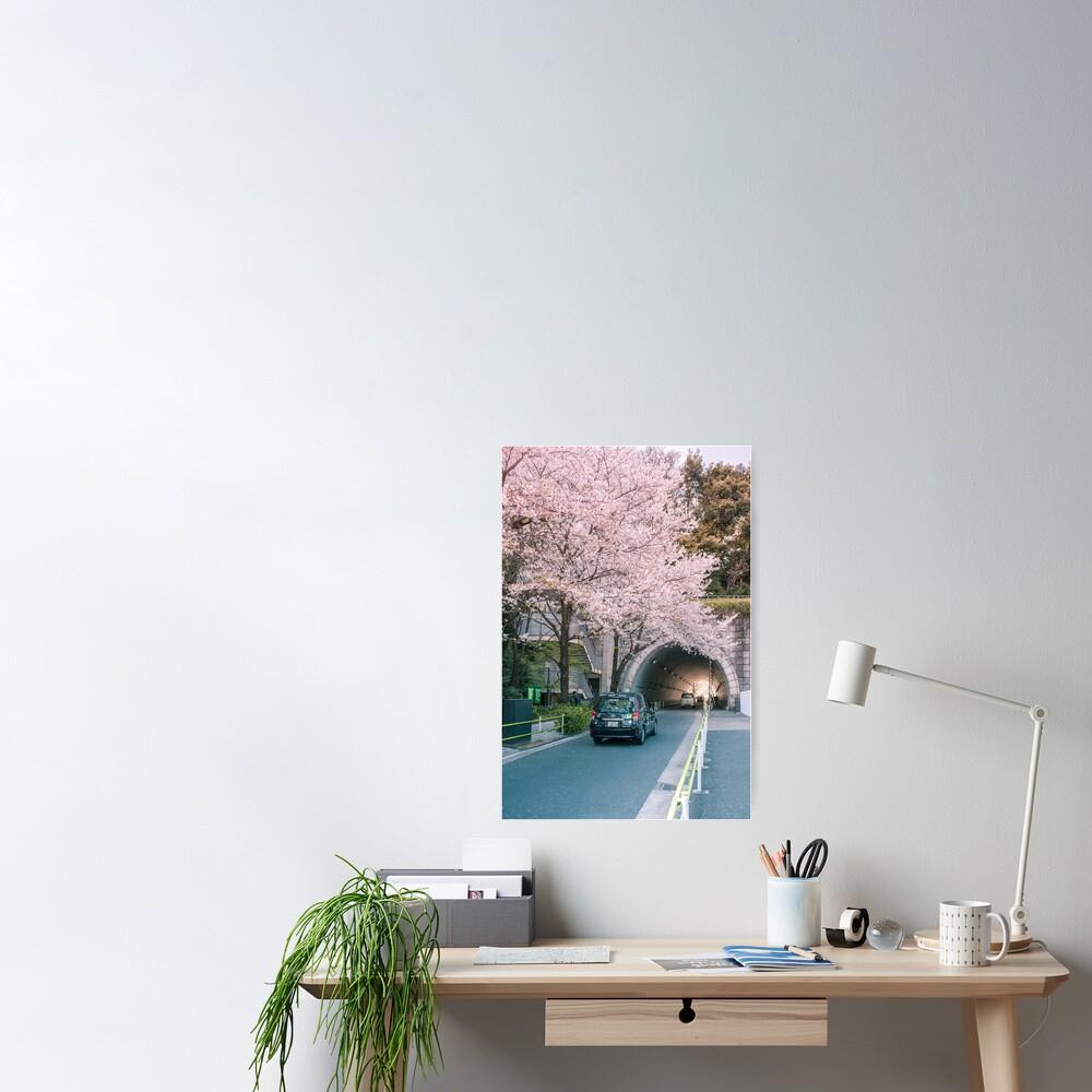 Sakura petals falling Poster