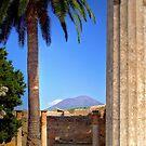 Vesuvius by Lois  Bryan