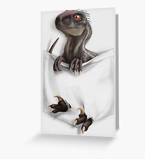 Pocket Protector - Male Raptor Greeting Card