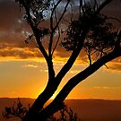 Blackheath Lookout NSW Australia - At the End of a Perfect Day by Bev Woodman