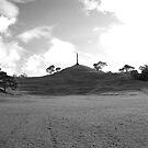 One Tree Hill in B&W by Adam Jones