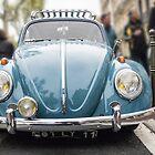Beetle by John Thurgood