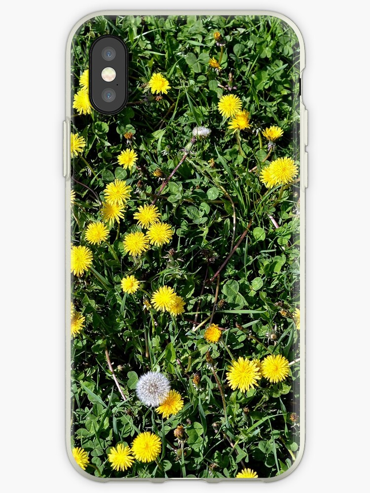 Decorative products with dandelions by starchim01