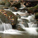 Smoky Mountain Stream by kinz4photo