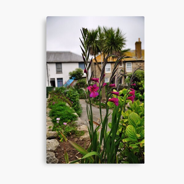 Flowers In a Border Canvas Print