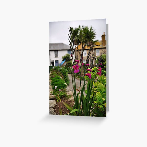 Flowers In a Border Greeting Card