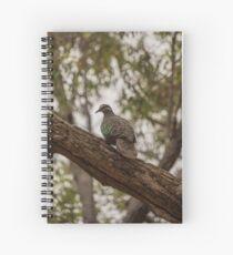 Bronzewing Pigeon Spiral Notebook