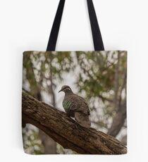 Bronzewing Pigeon Tote Bag