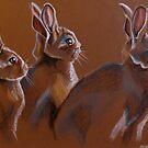 Three Rabbits by MegJay