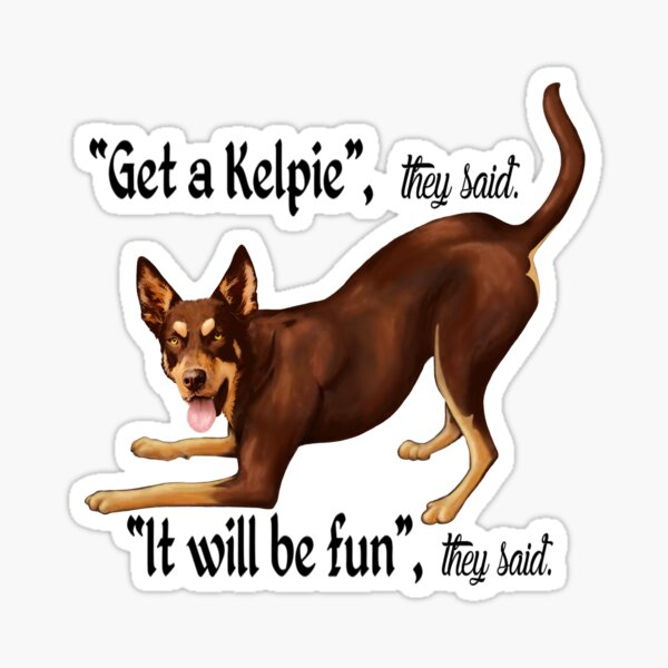 Get a Kelpie - it will be fun! Sticker