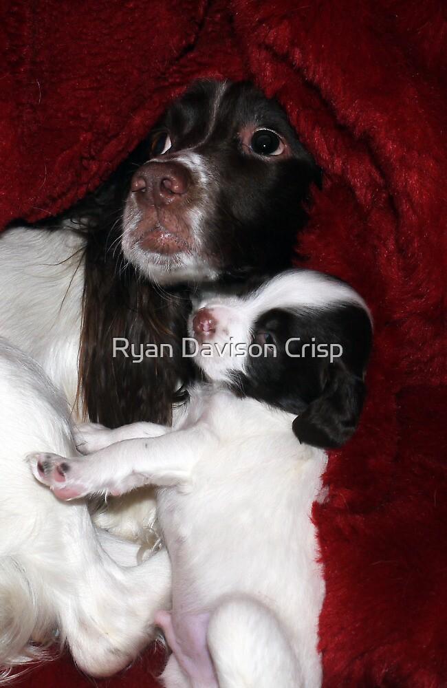Mother & Son by Ryan Davison Crisp