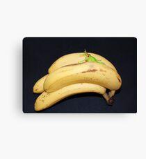 Daft Bananas!! Canvas Print