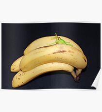 Daft Bananas!! Poster