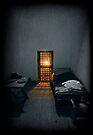 Rays of Freedom by Evelina Kremsdorf