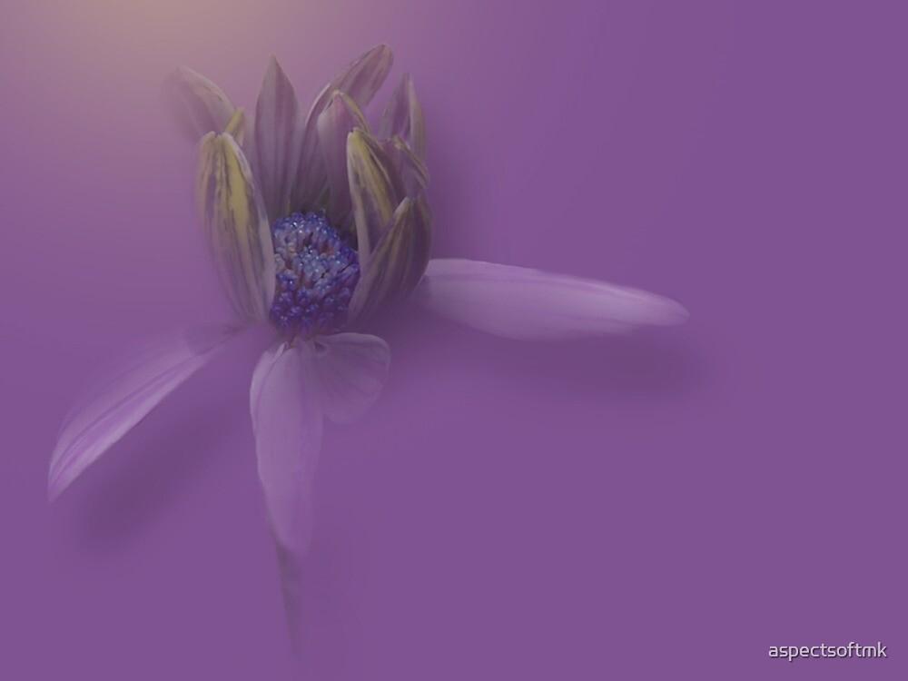 loving pastel... by aspectsoftmk