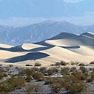 Mesquite Sand Dunes, Death Valley, USA. by Jonathan Maddock