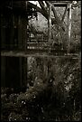 Diapidated quarry workings - Nazi labour camp by Peter Harpley