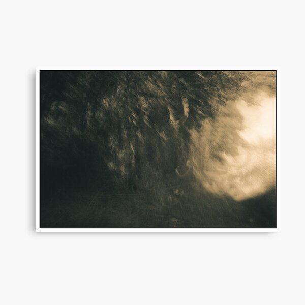 Enter The Other Realm Canvas Print
