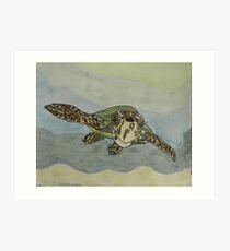 Sea Turtle Art ... t23 Art Print
