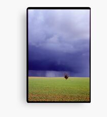 Coming Rain, Mallee Canvas Print