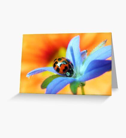 Good luck.... Greeting Card