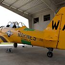 North American SNJ-6 Texan (Warbird Adventures) Marines by Mark Kopczewski
