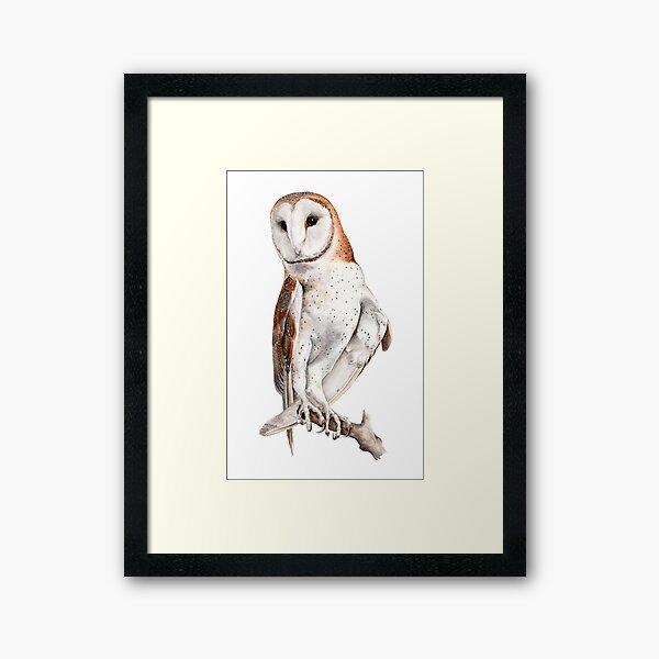 Barn Owl Watercolor Framed Art Print