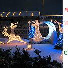 Christmas Holiday Card 3993 - LIDO's Reindeer Riga Latvia by FirstTree