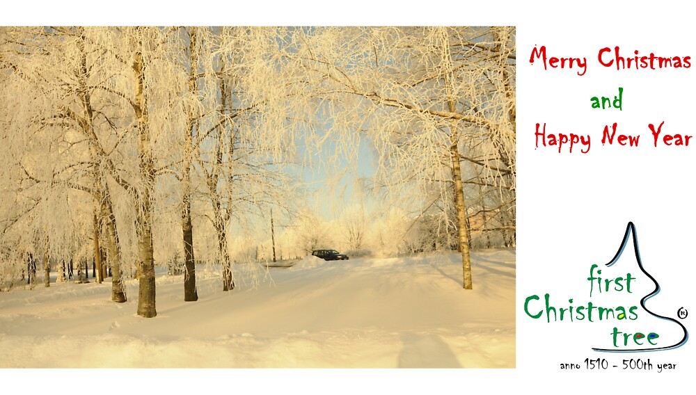 Christmas Holiday Card 8333C - Winter Wonderland - Silver Trees by FirstTree