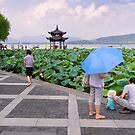 What's in the water - Hangzhou, China by Norman Repacholi
