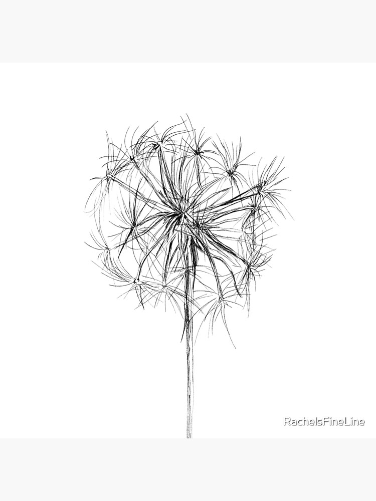 Dandelion Wish Flower Drawing by RachelsFineLine