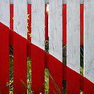 Casablanca - fence by Marjolein Katsma