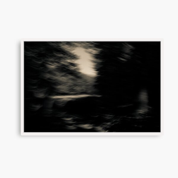 From The Darkness Of The Forest Into The Light Of The Clearing Canvas Print