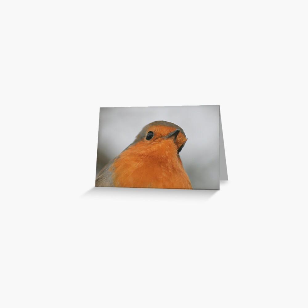 Christmas Robin 2 Greeting Card