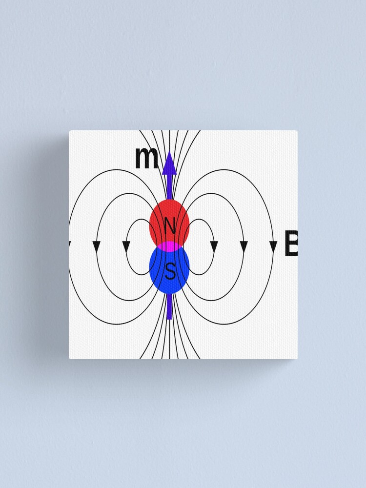Alternate view of A #magnetic #dipole is the limit of either a closed loop of #electric #current or a pair of poles as the dimensions of the source are reduced to zero while keeping the magnetic moment constant Canvas Print
