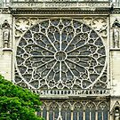 South Facade of Notre Dame with rosette at the transept by Erwin G. Kotzab