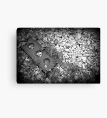Raw Material Canvas Print